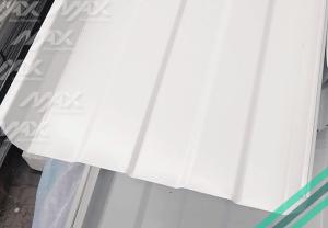 KR18 lámina pintro de Max Acero Monterrey.